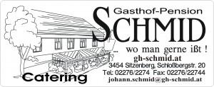 Logo schmidsc