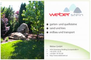 Weber-Stein-Logo